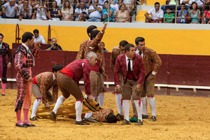 Forcado of the groups of Évora and Lisbon call for help so the injured forcado can be assisted.  Forcados get frequent injuries during their career, from broken limbs to more serious injuries like lifelong disabilities or even death. © Eduardo Leal