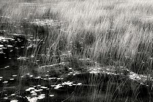 The Tarn 7, © Alan Henriksen