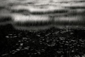 The Tarn 19, © Alan Henriksen