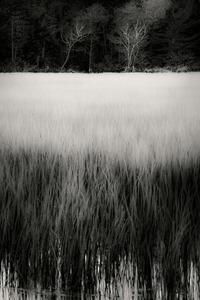 The Tarn 44, © Alan Henriksen