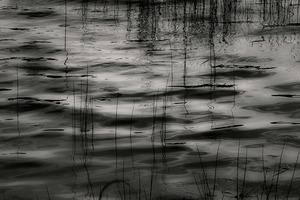 Upper Hadlock Pond 60, © Alan Henriksen