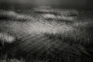 Upper Hadlock Pond 1, © Alan Henriksen