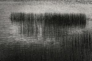 Upper Hadlock Pond 26, © Alan Henriksen