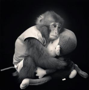 Big with Monkey Doll, Suo Sarumawashi © Hiroshi Watanabe