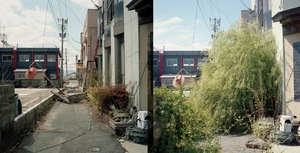 Apr.2012 / Sep.2012 © Toshiya Watanabe