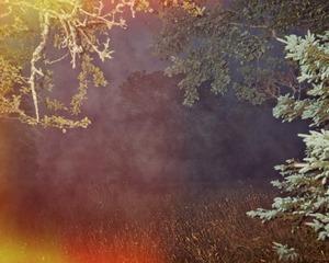 Exposed Fog                               © Paul Thulin