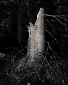 Grave of Abelard                       © Paul Thulin