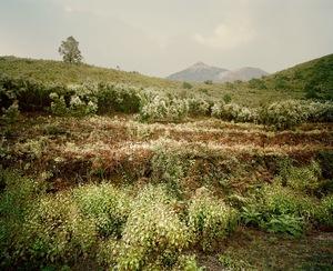 El Teide, view #07