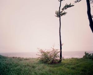 Still © Meike Nixdorf
